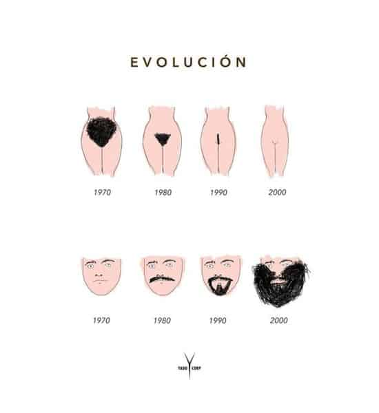 The evolution of body