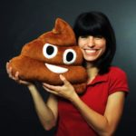 Emotikon Kissen Poop