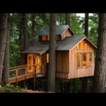 Want to get in Treehouse Life?