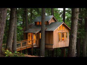Möchtest du in Baumhaus Leben?