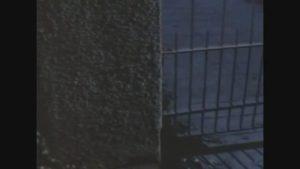 Night of the Creeps – Alternate Ending