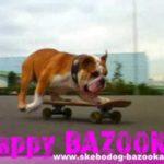 Tokio Skateboarding Bulldog Bazooka