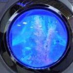 Waschmaschinen-Aquarium selbstgemacht