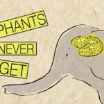 Why elephants forget anything