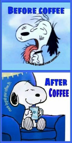Snoopy before and after coffee