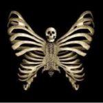Czaszka Butterfly