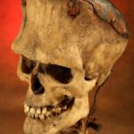 The Skull of Frankenstein's Monster