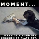 The moment…