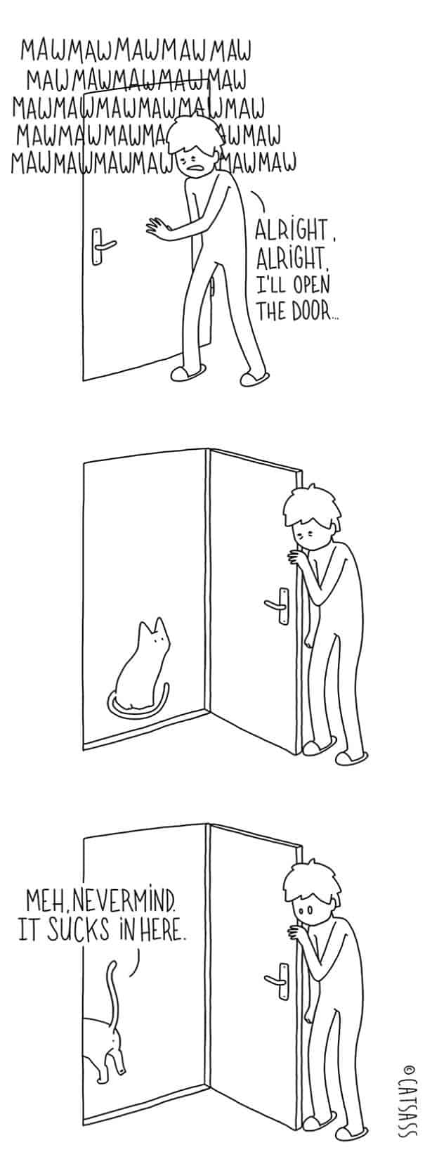 What really think cats