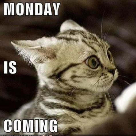 Monday is Coming!