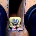 SpongeBob Basskopf