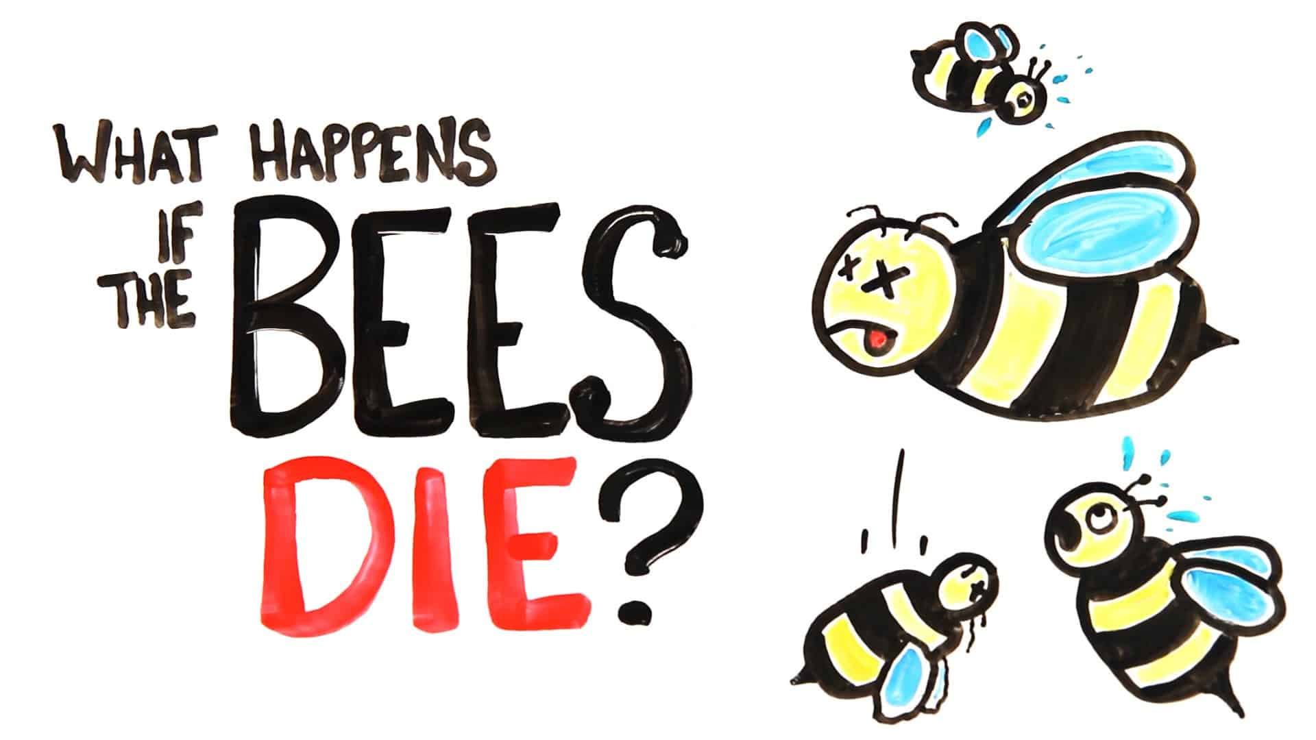 How Long Can Bumble Bees Survive Without Food