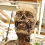 "Come gli zombie di ""The Walking Dead"" essere"