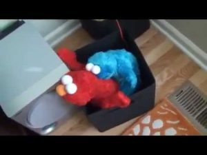 Elmo et Cookie Monster ayant un bon moment ensemble