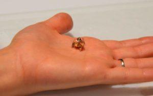 Origami Miniature plis de robots, Parcourir, flotteurs et se décompose
