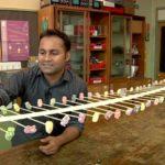 Wellen-Maschine aus Gummibären