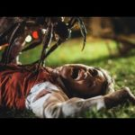 Stung – Trailer