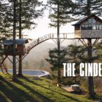The Cinder Cone: Two tree houses and a skate bowl in the forest