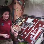 Tortillas in Space