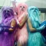 3 Les anges Chewie