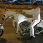 Das Einhorn-Motorrad