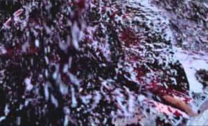 Vikings: Brutalny zwiastun do sezonu 4