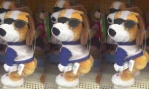 Twerking Dog