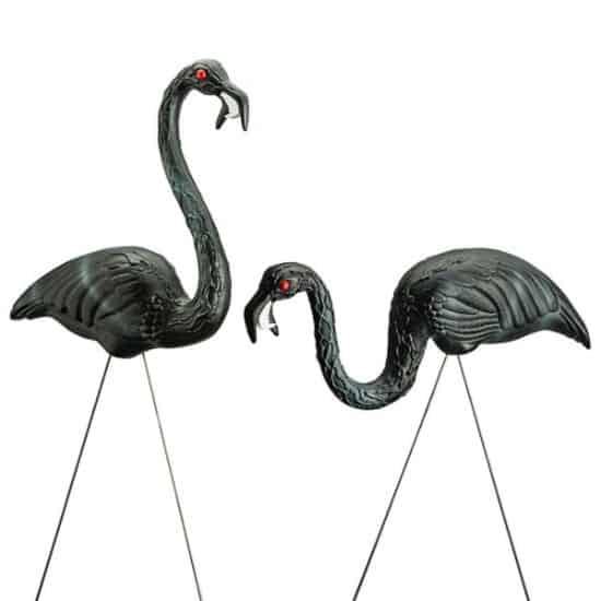 Zombie Flamingos