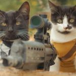 Apokatzlypse: Cats vs. Zombies