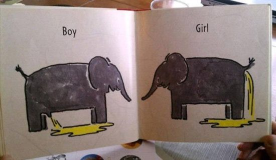 Children's book explains the difference between man and woman