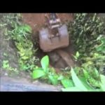 Baby elephant rescued from waterhole