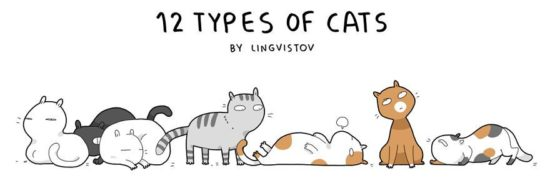 the 12 Types of Cats