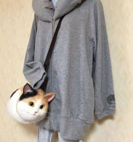 Sac Cat