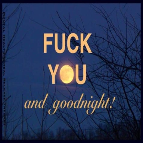 Fuck you and Goodnight!