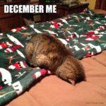 Marraskuu Me, Joulukuu Me