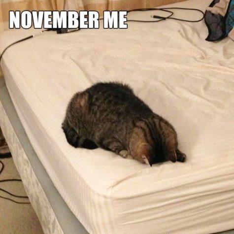 November Me