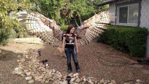 Pneumatische Flügel