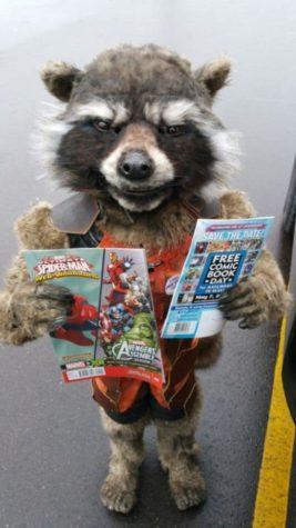 Mejor disfraz Rocket mapache nunca