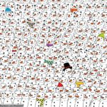 Whoever finds the Panda?