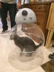 Wie BB-8 funktioniert