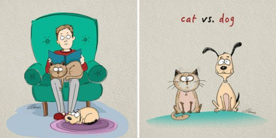 Cats vs Dogs: 6 Unterschiede illustriert von Bird Born