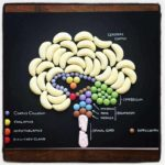 Anatomy of sweets