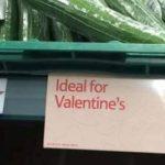 Ideal für den Valentinstag