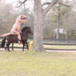 T-Rex riding a horse, the kicks a giant football