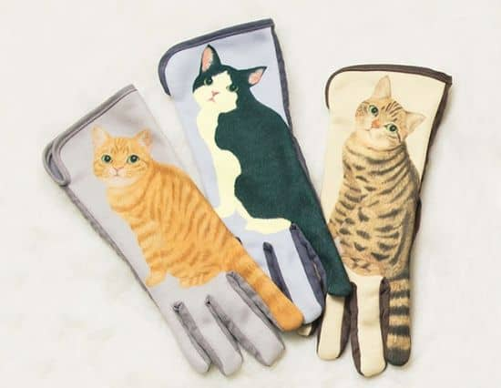 Gants écran tactile permettent de chats queues tortiller