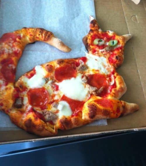 Katzen-Pizza
