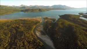 Lachswanderung in den Tod mit der Drohne von Oben gefilmt