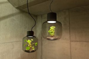 Mygdal: The autonomous plant lamp