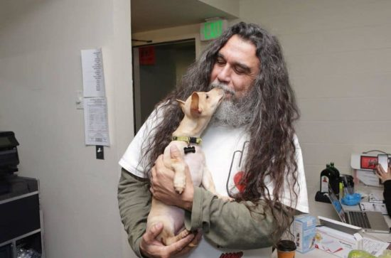 Slayer e Testament coccolare con i cuccioli