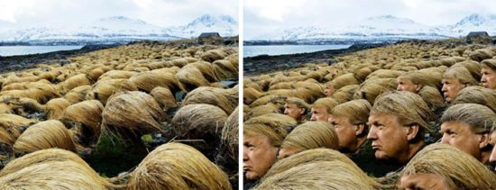 Secret Photos show, wo Donald Trump sein Haar züchtet